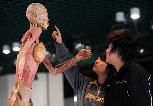 真人人体标本赤裸裸被人参观[清晰组图]