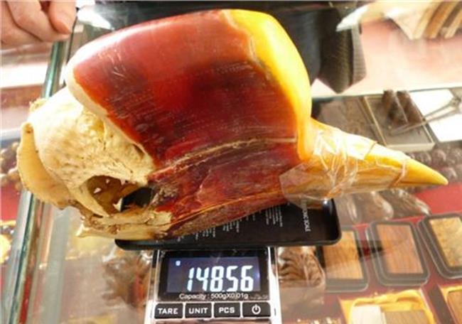 【鹤顶红鸟头】雅玩市场大多在出售鸟头 哪儿来那么多鹤顶红?