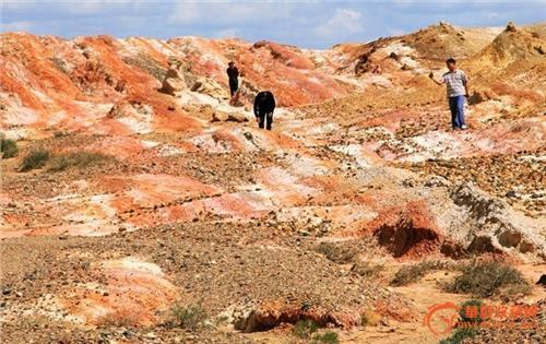 【魔鬼城捡宝石光的地方】新疆克拉玛依魔鬼城捡石头好处