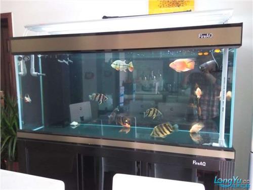 怎样降低鱼缸水ph值 请问鱼缸里的水PH值对养好热带鱼影响大吗?