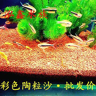 鱼缸种水草用什么底砂 水族箱铺水草还是底砂