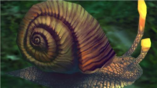 水蜗牛吃水草 水蜗牛 你可真牛啊!(转载作文)