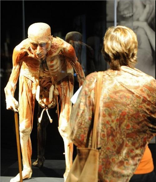 大连女主持人体标本 大连人体标本工厂尸源成谜 传涉及失踪美女主播