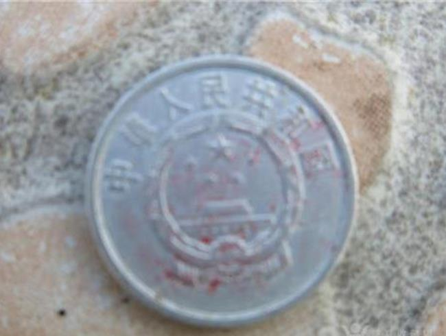 梅花5角硬币值钱吗 1955年5分硬币值多少钱?1955年5分硬币收藏价值高吗