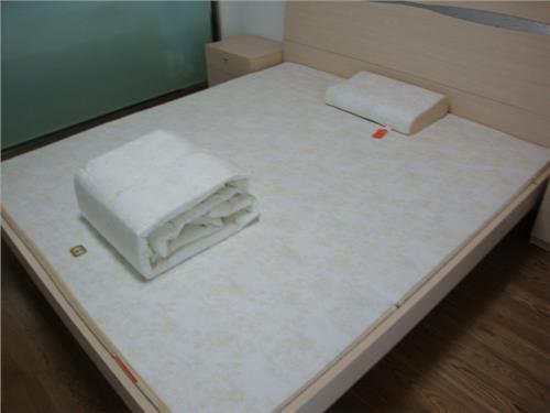 睡中脉磁疗床垫产生的好转反应及能解决的问题: