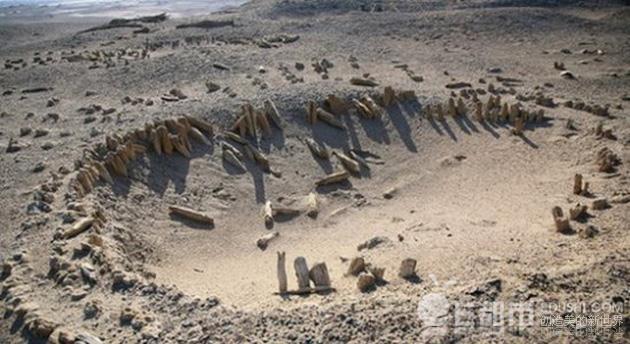 双鱼玉佩图片 双鱼玉佩恐怖的图片 新疆罗布泊神秘双鱼玉佩