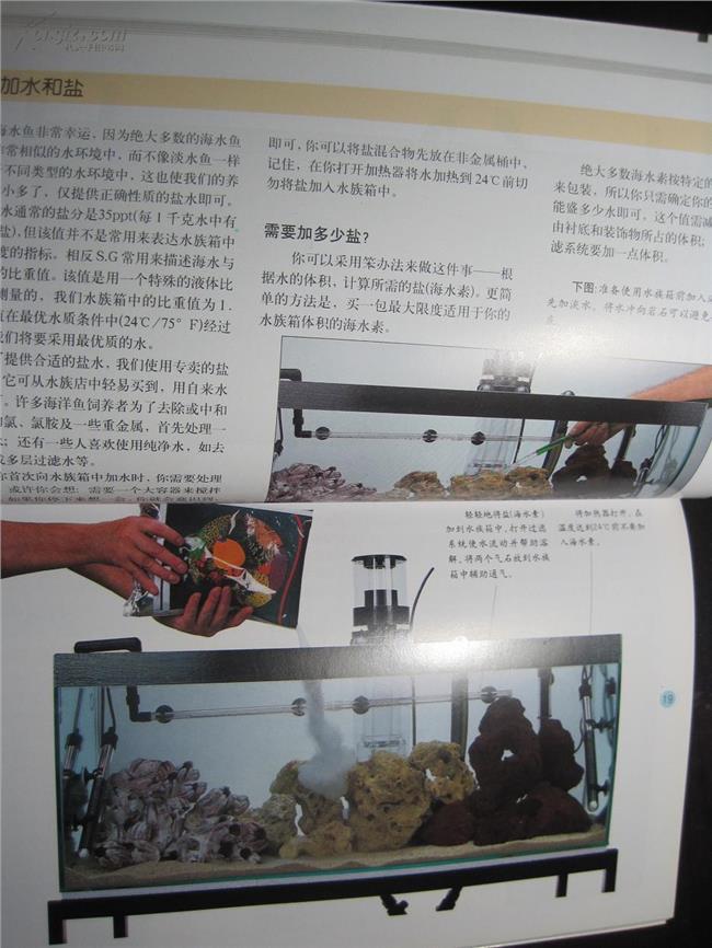 养热带鱼鱼缸装置 裸缸养热带鱼需要什么样的配置?