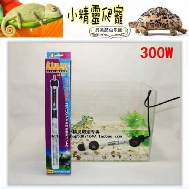 热带鱼鱼缸要些什么 热带鱼加热棒贵吗? 热带鱼加热棒使用需要注意什么