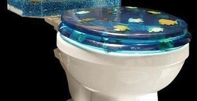 热带鱼鱼缸换水 怎样给养热带鱼(孔雀鱼)的鱼缸换水?