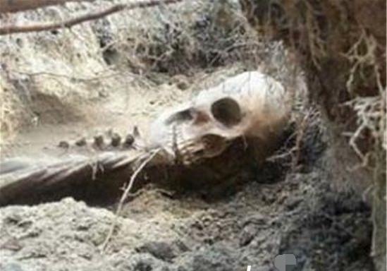 吕布墓出土了什么东西