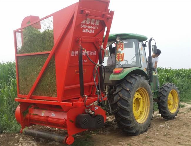 生姜种植成本 2016年山东棉花种植成本及利润分析 1亩棉花的生产成本和利润分析