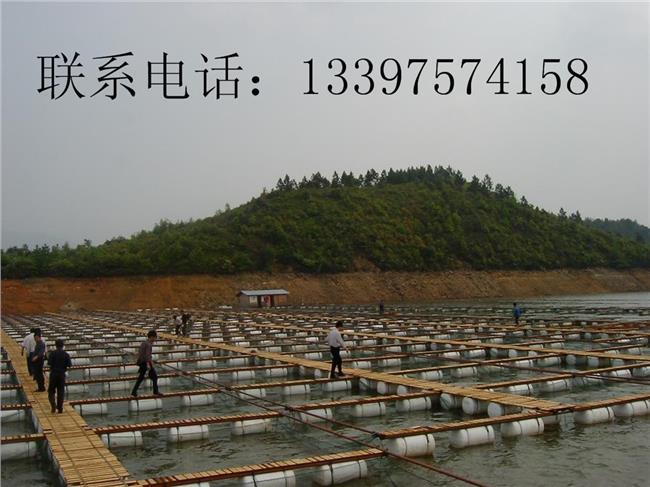 鱼塘养殖有补助吗 【农业鱼塘补助政策2016年】2016年养鱼有补助政策