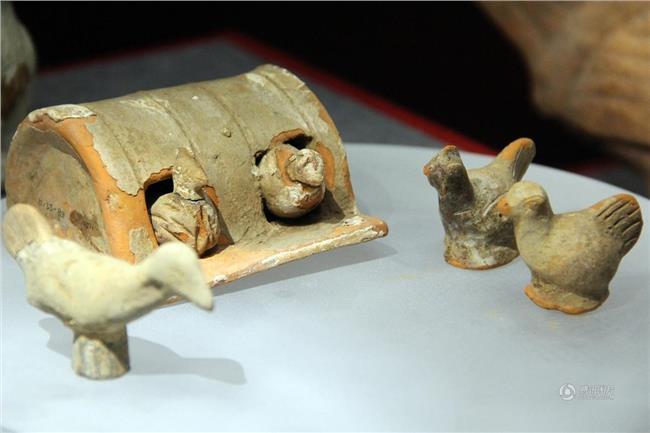 赵云墓出土的容貌 南京博物馆展出2800年前的西周鸡蛋 出土于墓葬之中