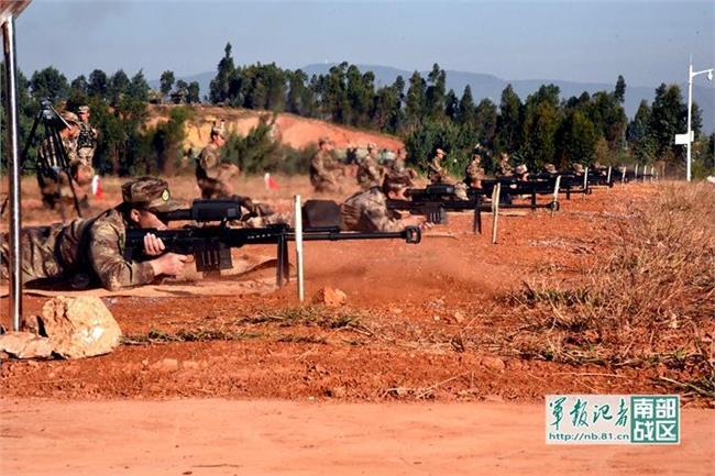 中国猛虎组织 猛虎组织惨败的真正原因 不是因为中国武器