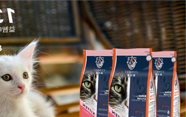 猫挑食不吃猫粮怎么办图片